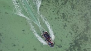 Aerial view of dinghy on Shark Bay shallows, West Australia
