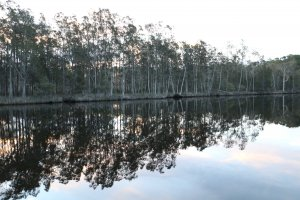 Reflections on the Myall River, Port Stephens, NSW